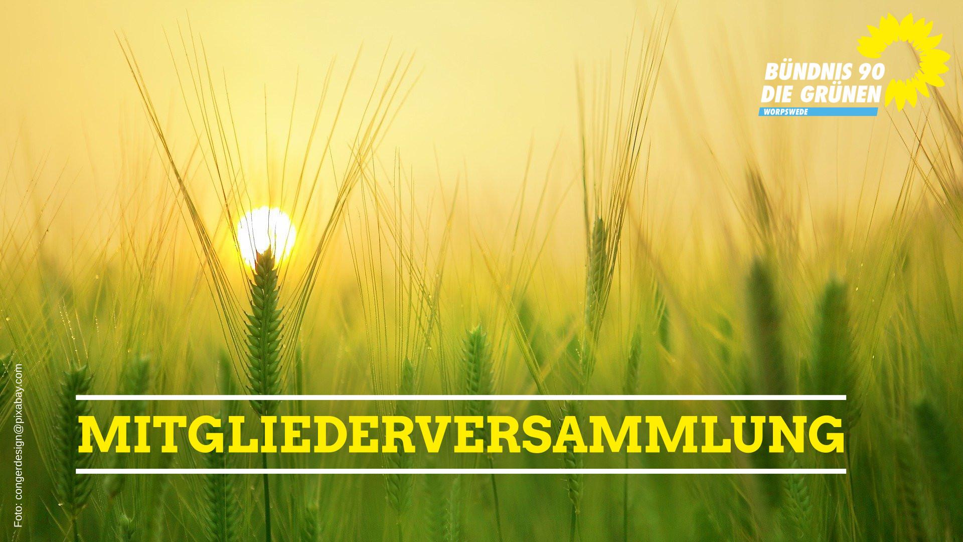 Mitgliederversammlung Die Grünen Worpswede